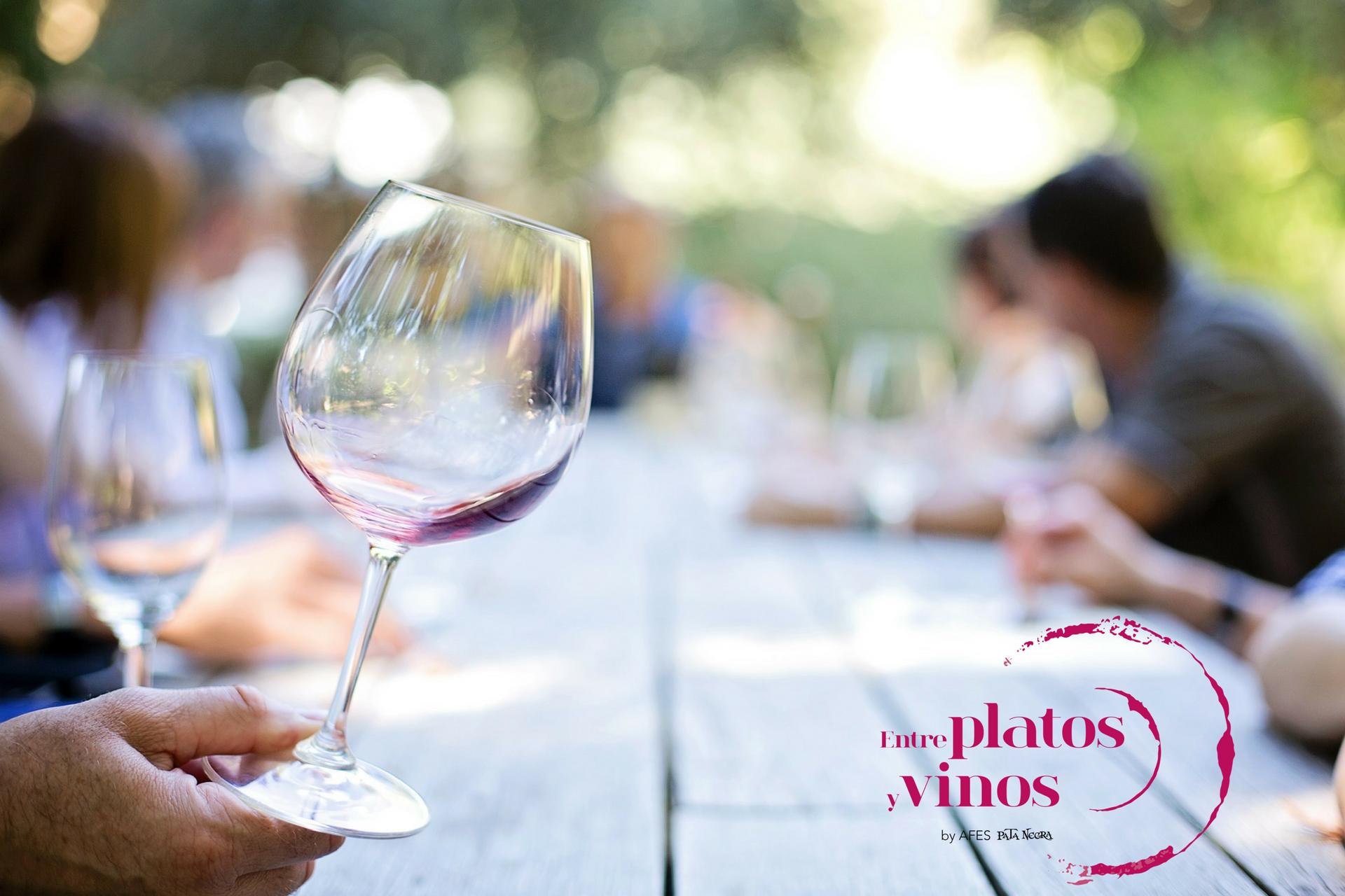 cata de vinos Entre platos y vinos